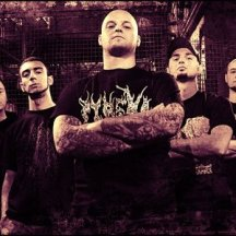 metalheads 7